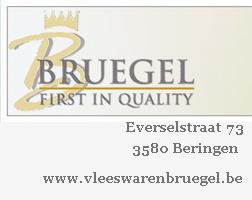 banner_Breugel